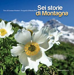 6-storie_S